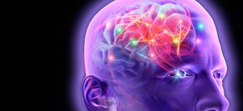 Epilepsy might be linked to structural differences in brain