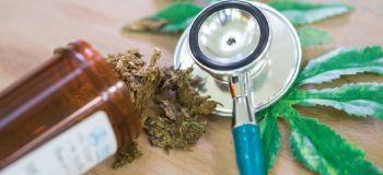 Cannabis medicinal, opción que enfrenta a pacientes y autoridades